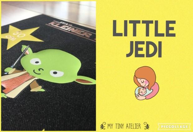 87. Little Jedi1